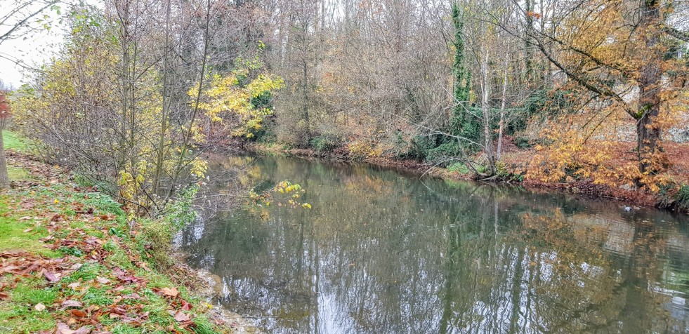 L'Ornain à Ligny-en-Barrois