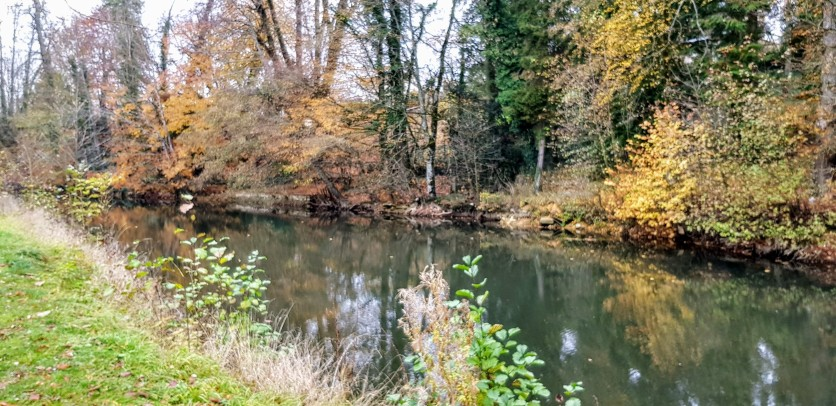 L'Ornain à Ligny-en-Barrois 2