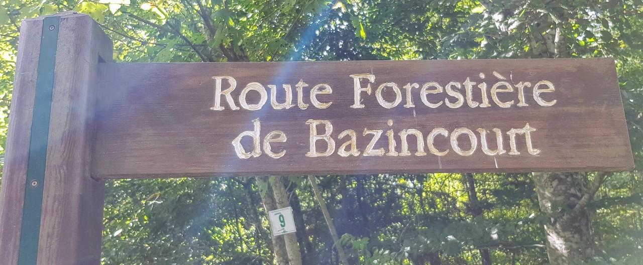 Forêt Domaniale du Haut-Juré le05/09/2019