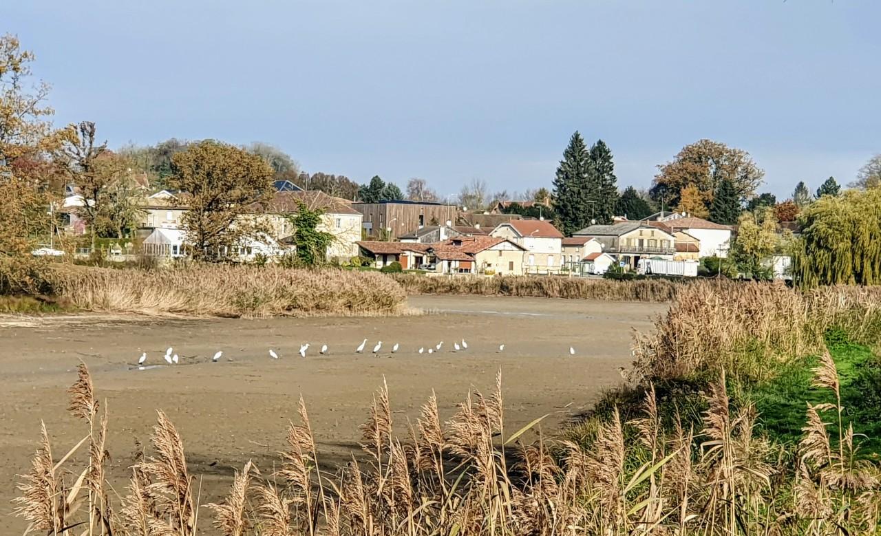 Givry-en-Argonne : repas d'automne le 21 novembre2019